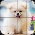 Tile Puzzle Pomeranian Dogs
