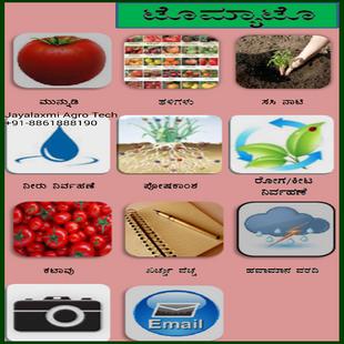 Screenshots - Tomato Kannada