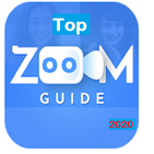 Top Zoom Guide 2020