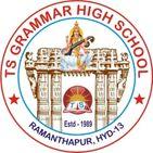 TS Grammar High School