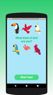 Screenshots - What kind of bird are you? Test