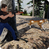 Wild Animals Hunter Sniper Shooting Missions