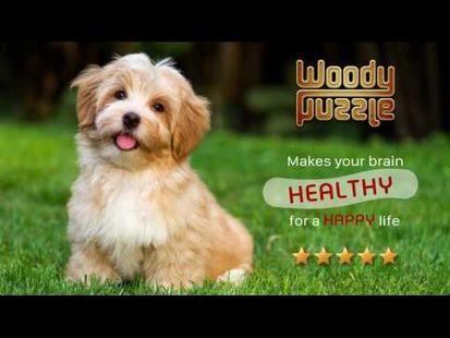 Video Image - Woody Block Puzzle ®