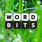 Word Bits: A Word Puzzle Game