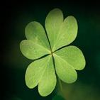 Your lucky clover